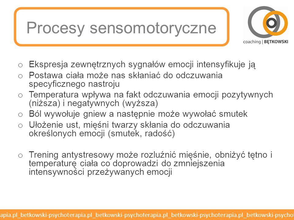 Procesy sensomotoryczne