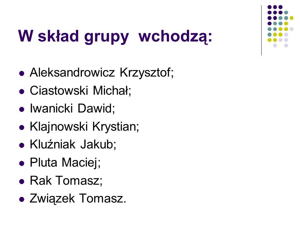 W skład grupy wchodzą: Aleksandrowicz Krzysztof; Ciastowski Michał;