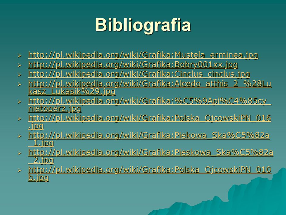 Bibliografia http://pl.wikipedia.org/wiki/Grafika:Mustela_erminea.jpg