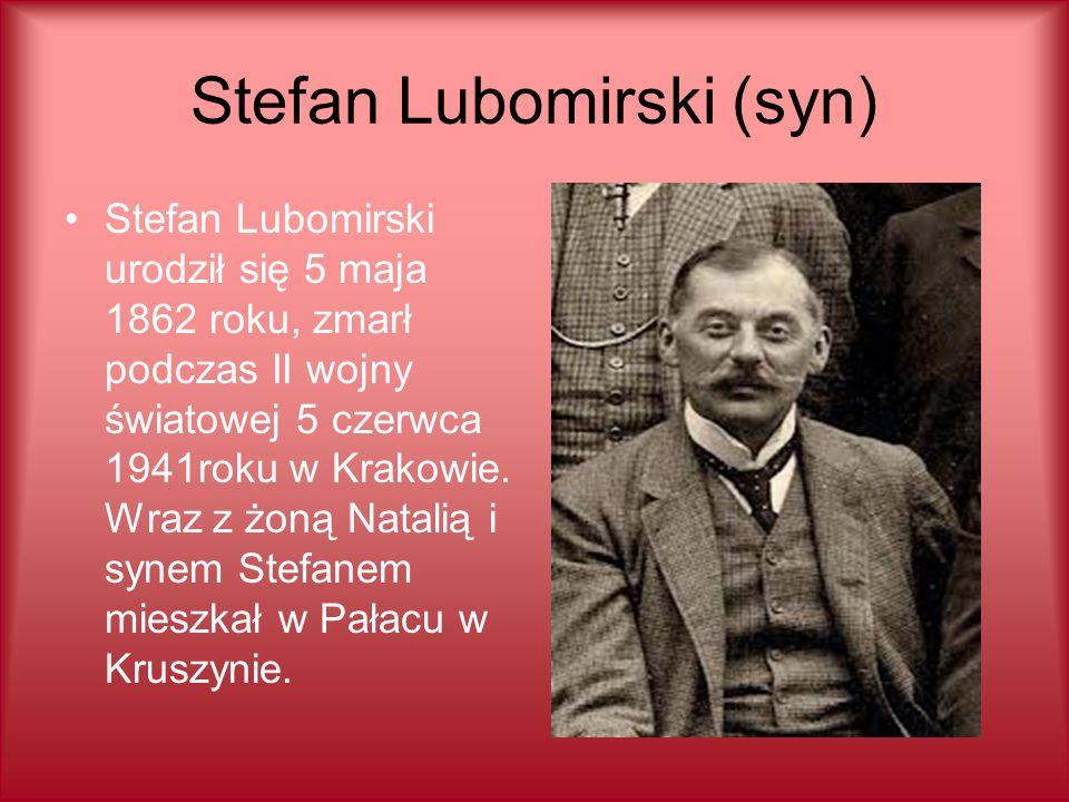 Stefan Lubomirski (syn)