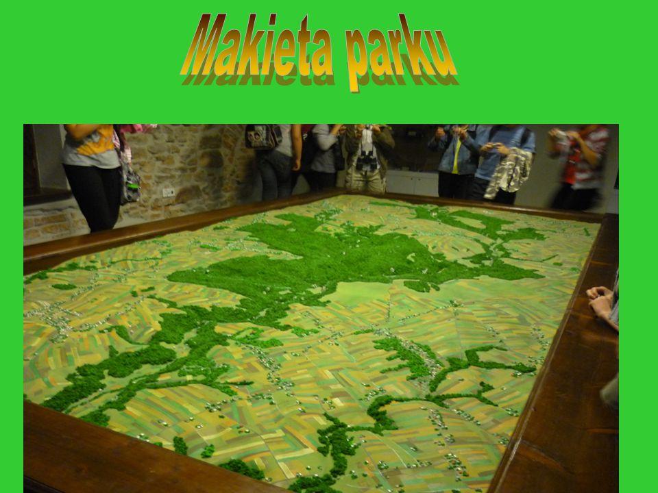 Makieta parku