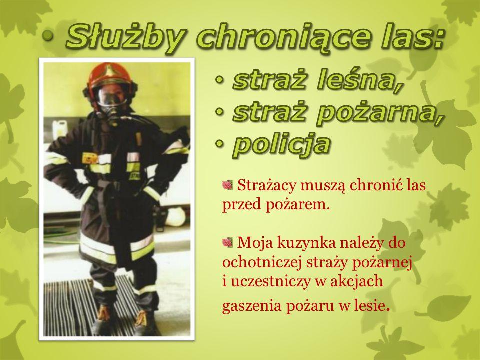 Służby chroniące las: straż leśna, straż pożarna, policja