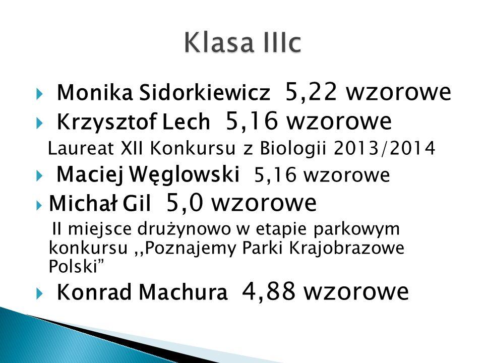 Klasa IIIc Monika Sidorkiewicz 5,22 wzorowe