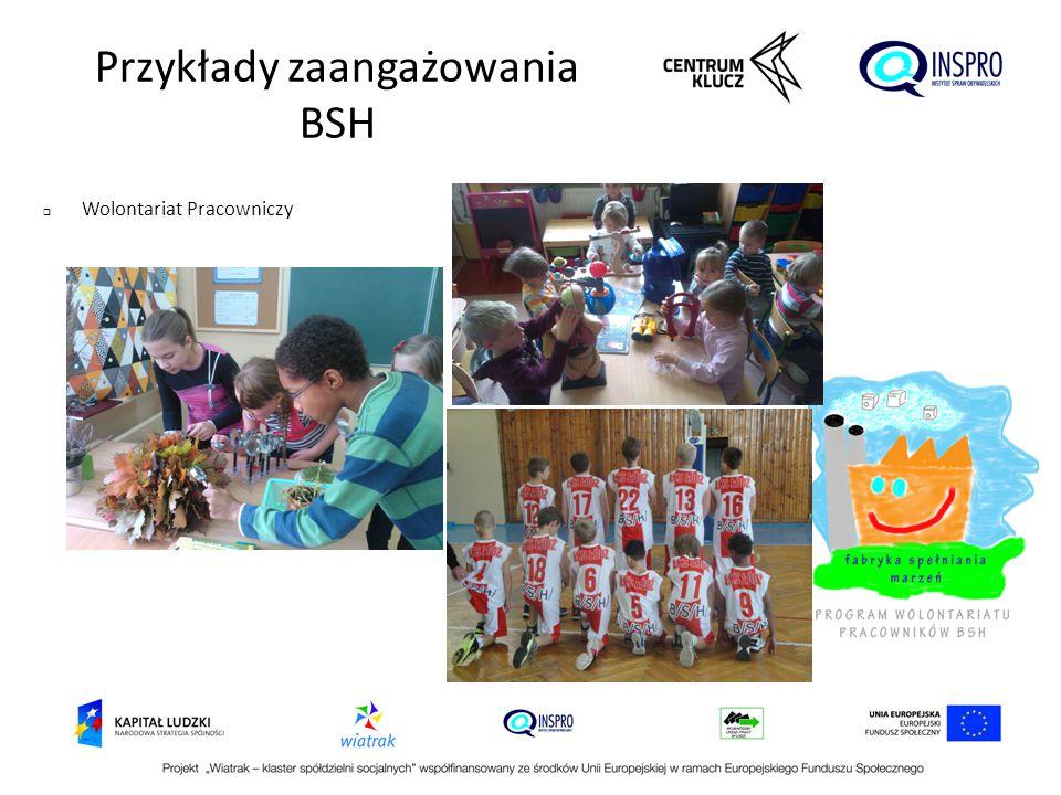Przykłady zaangażowania BSH