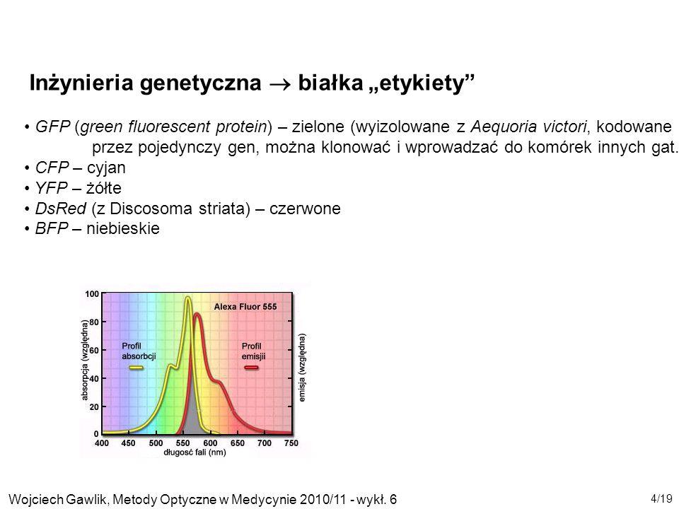 """Inżynieria genetyczna  białka """"etykiety"""
