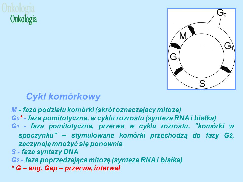 Onkologia Cykl komórkowy