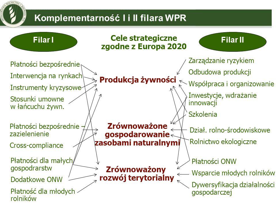 Komplementarność I i II filara WPR