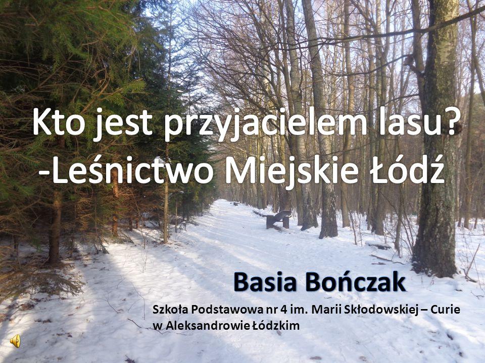 Kto jest przyjacielem lasu -Leśnictwo Miejskie Łódź