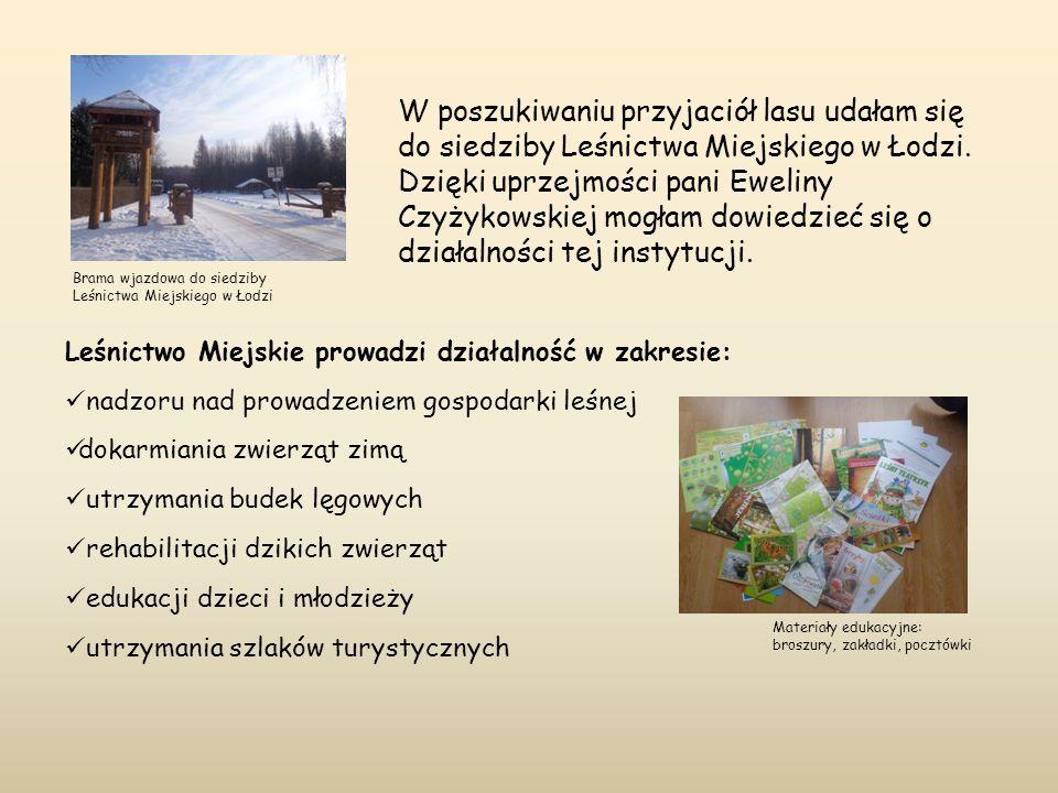 W poszukiwaniu przyjaciół lasu udałam się do siedziby Leśnictwa Miejskiego w Łodzi. Dzięki uprzejmości pani Eweliny Czyżykowskiej mogłam dowiedzieć się o działalności tej instytucji.