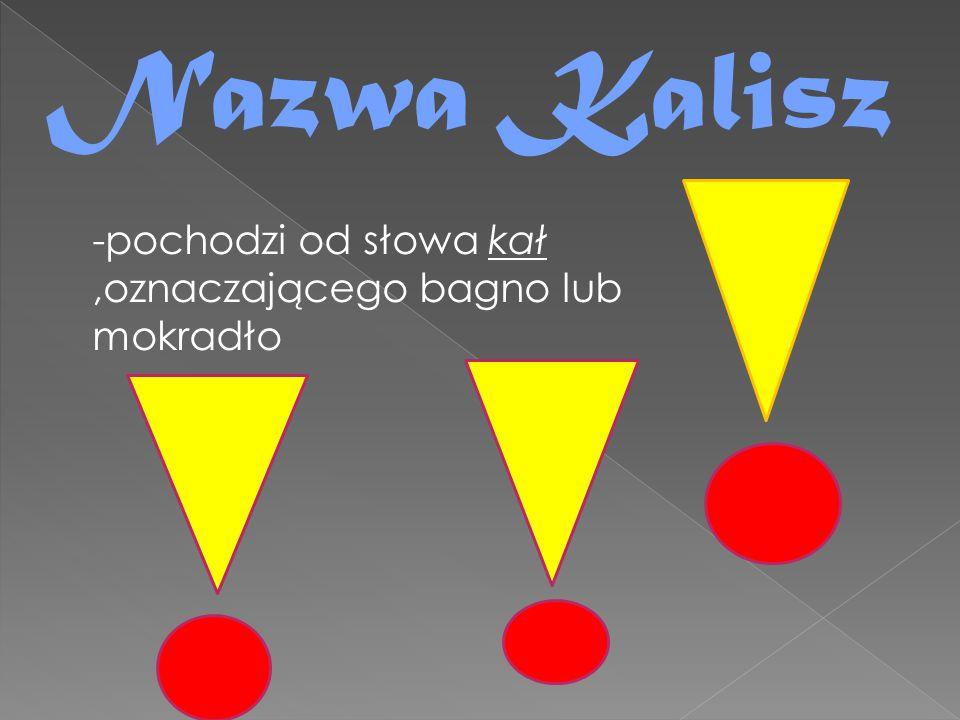 Nazwa Kalisz -pochodzi od słowa kał ,oznaczającego bagno lub mokradło