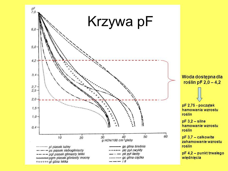 Woda dostępna dla roślin pF 2,0 – 4,2