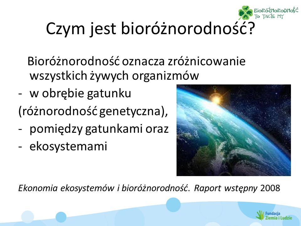 Czym jest bioróżnorodność