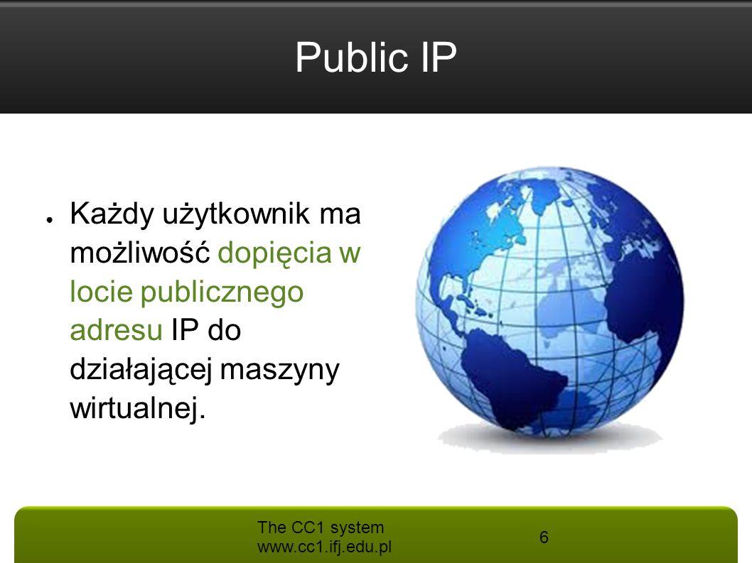 Public IP Każdy użytkownik ma możliwość dopięcia w locie publicznego adresu IP do działającej maszyny wirtualnej.