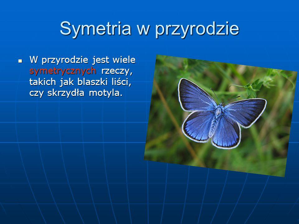 Symetria w przyrodzie W przyrodzie jest wiele symetrycznych rzeczy, takich jak blaszki liści, czy skrzydła motyla.