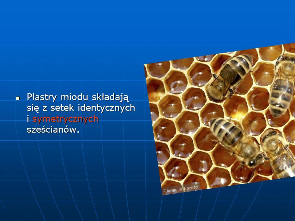 Plastry miodu składają się z setek identycznych i symetrycznych sześcianów.
