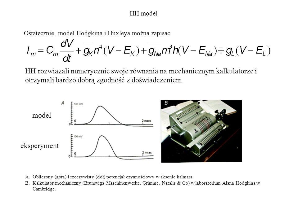 HH model Ostatecznie, model Hodgkina i Huxleya można zapisac: