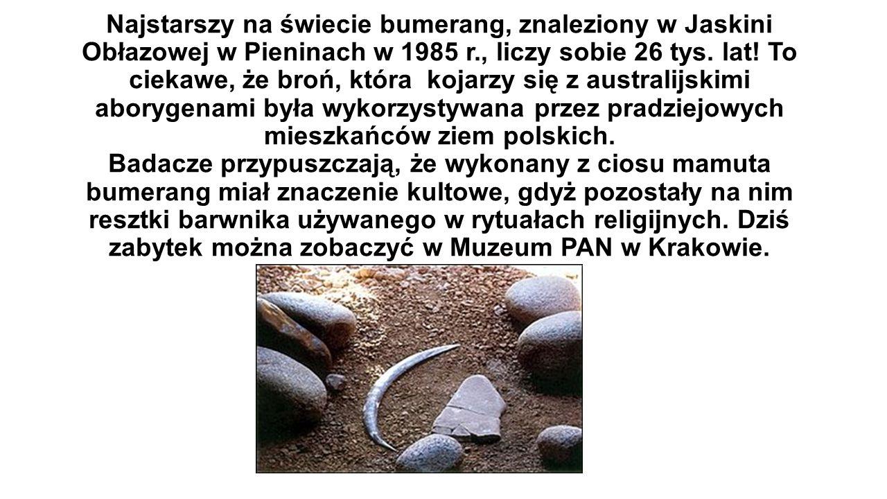 Najstarszy na świecie bumerang, znaleziony w Jaskini Obłazowej w Pieninach w 1985 r., liczy sobie 26 tys.