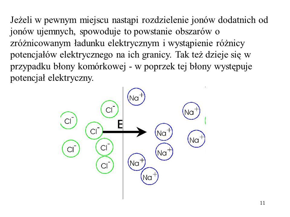Jeżeli w pewnym miejscu nastąpi rozdzielenie jonów dodatnich od jonów ujemnych, spowoduje to powstanie obszarów o zróżnicowanym ładunku elektrycznym i wystąpienie różnicy potencjałów elektrycznego na ich granicy.