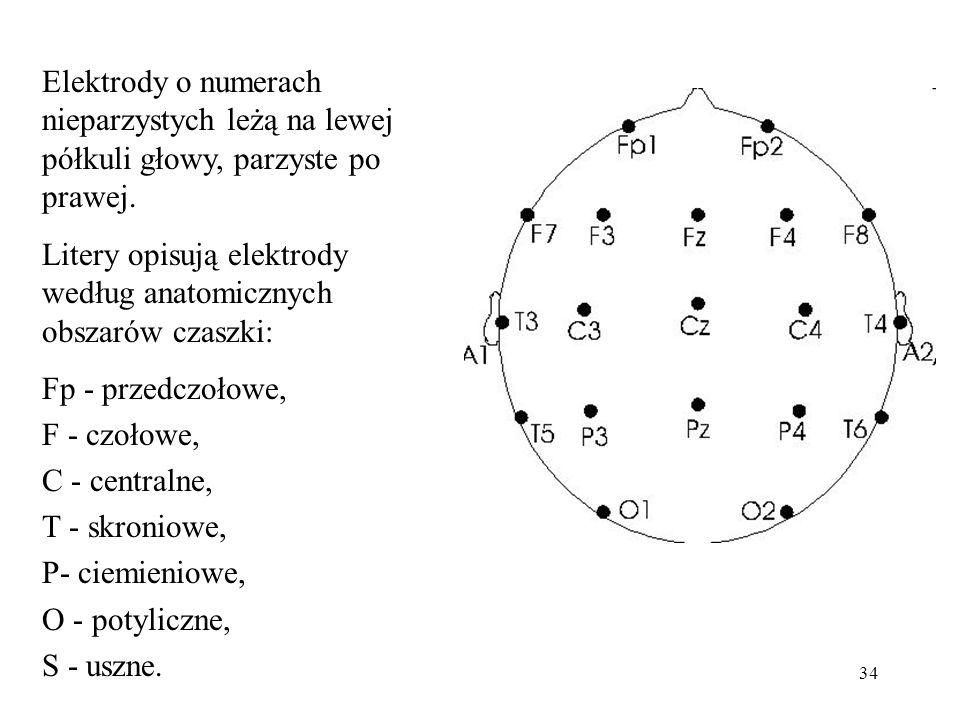 Elektrody o numerach nieparzystych leżą na lewej półkuli głowy, parzyste po prawej.