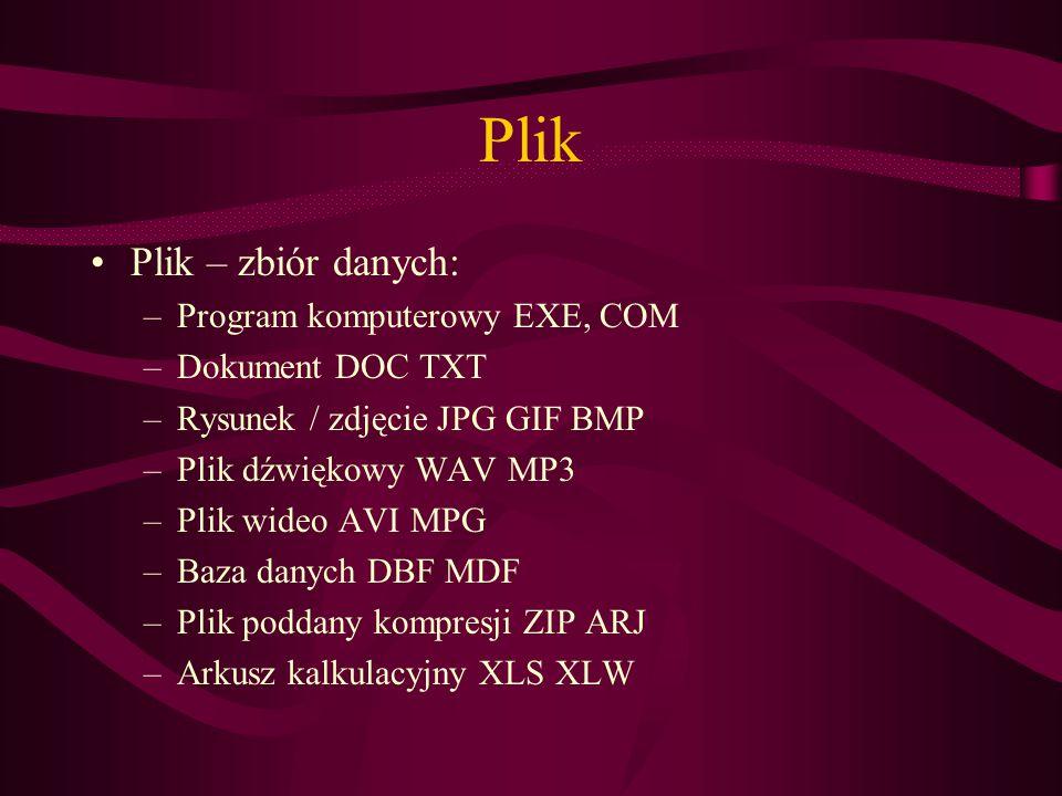 Plik Plik – zbiór danych: Program komputerowy EXE, COM