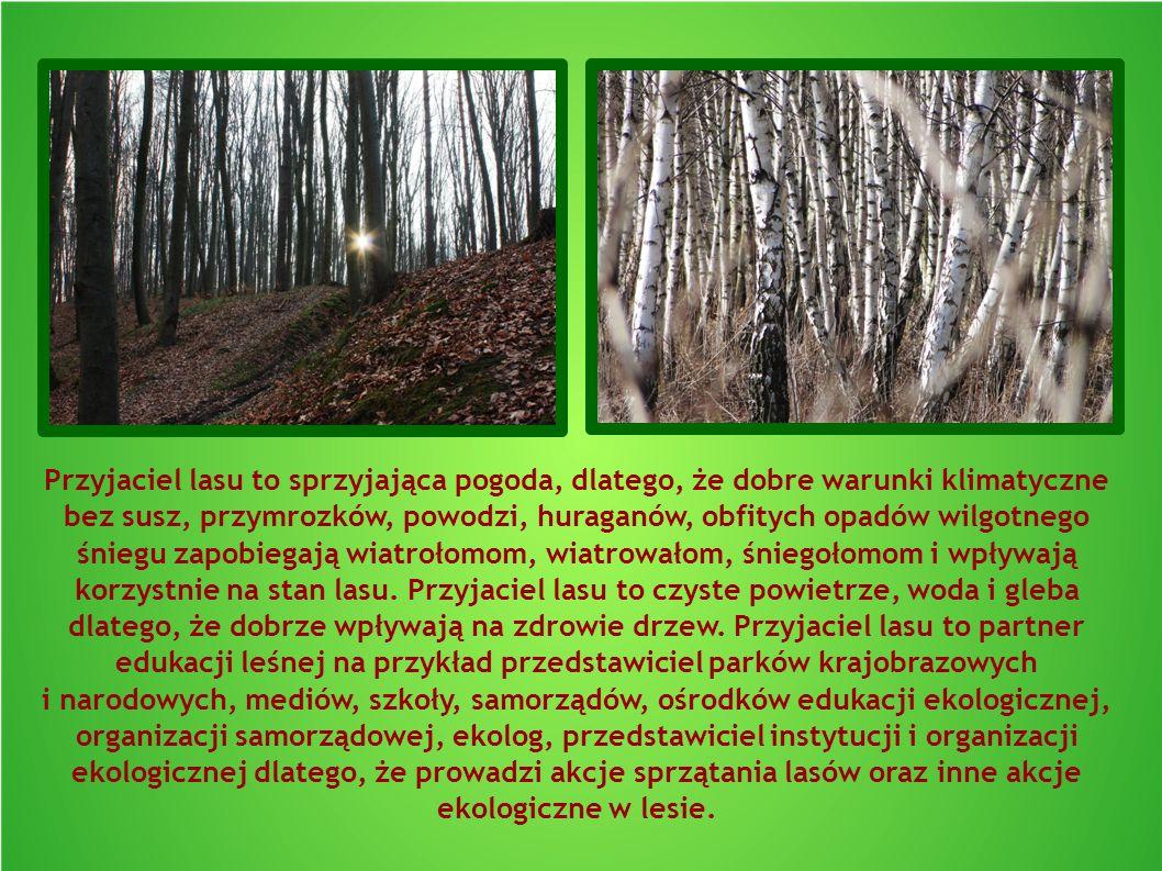 Przyjaciel lasu to sprzyjająca pogoda, dlatego, że dobre warunki klimatyczne bez susz, przymrozków, powodzi, huraganów, obfitych opadów wilgotnego śniegu zapobiegają wiatrołomom, wiatrowałom, śniegołomom i wpływają korzystnie na stan lasu.
