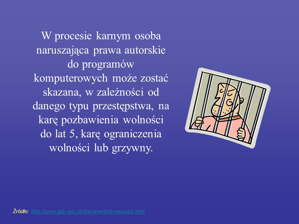 W procesie karnym osoba naruszająca prawa autorskie do programów komputerowych może zostać skazana, w zależności od danego typu przestępstwa, na karę pozbawienia wolności do lat 5, karę ograniczenia wolności lub grzywny.