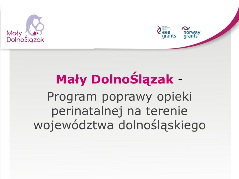 Mały DolnoŚlązak - Program poprawy opieki perinatalnej na terenie województwa dolnośląskiego