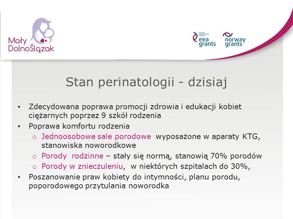 Stan perinatologii - dzisiaj