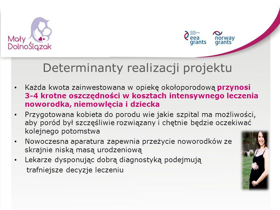 Determinanty realizacji projektu