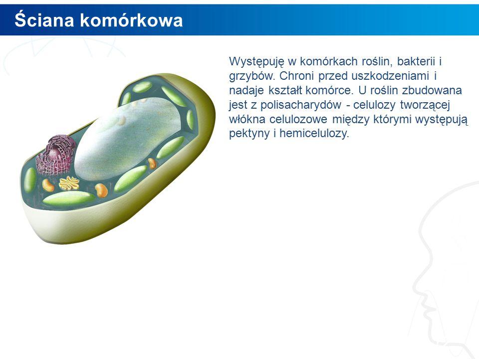 Ściana komórkowa