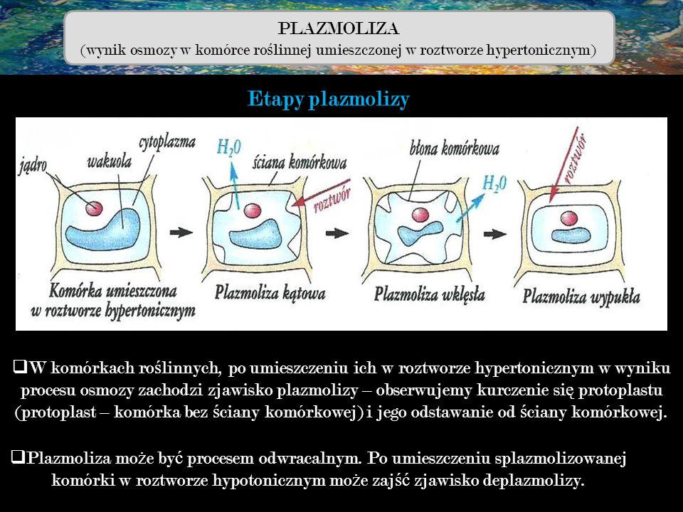 komórki w roztworze hypotonicznym może zajść zjawisko deplazmolizy.