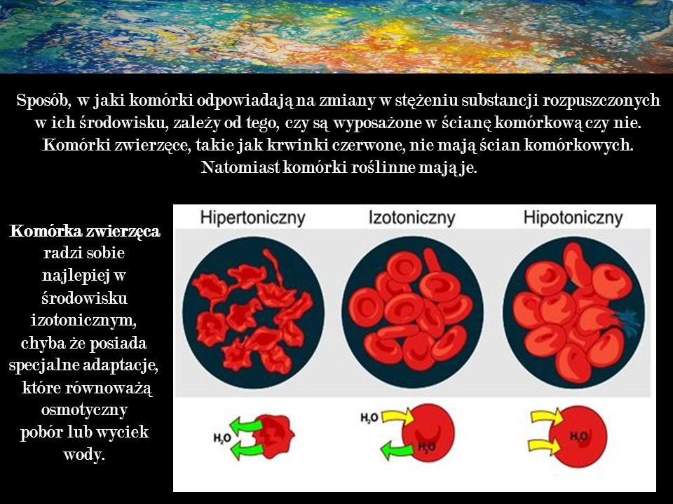 Natomiast komórki roślinne mają je.