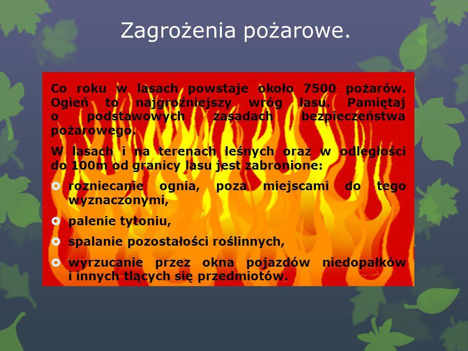 Zagrożenia pożarowe.