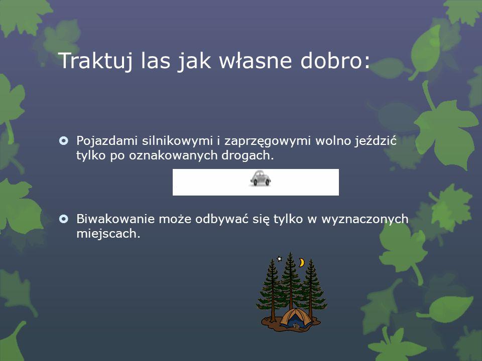 Traktuj las jak własne dobro: