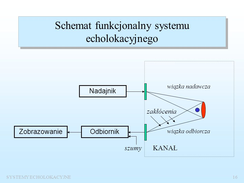 Schemat funkcjonalny systemu echolokacyjnego