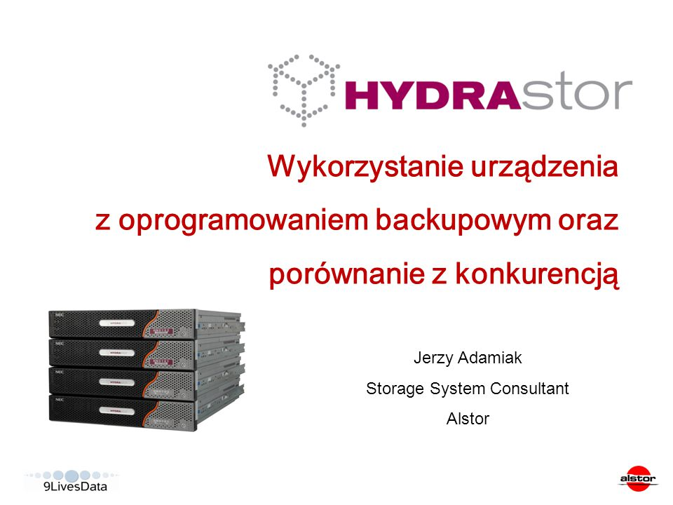 Storage System Consultant
