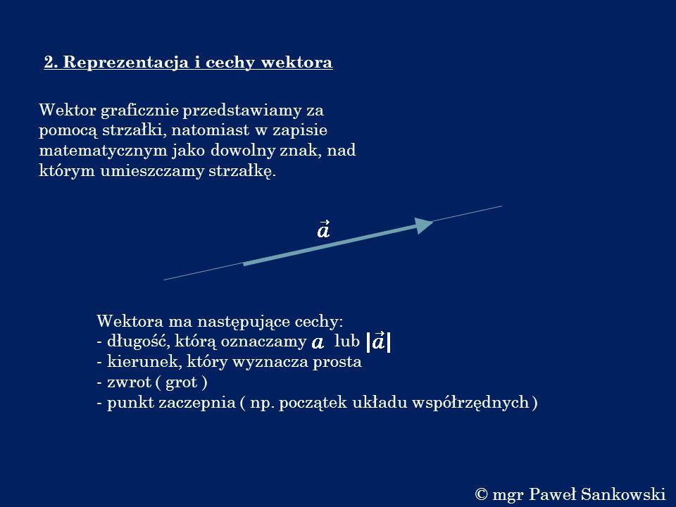 2. Reprezentacja i cechy wektora