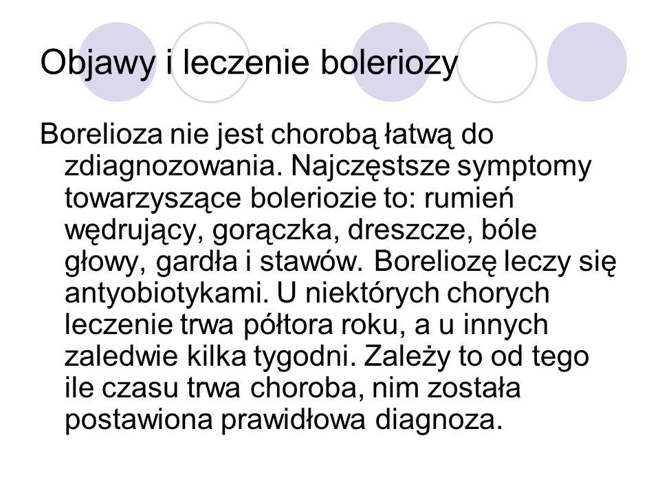 Objawy i leczenie boleriozy
