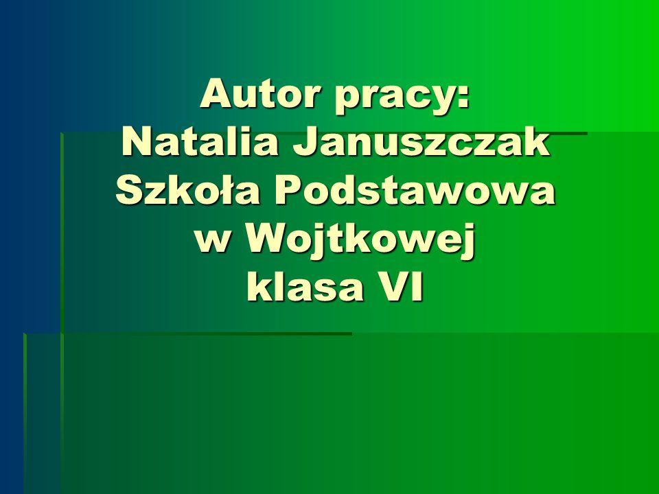 Autor pracy: Natalia Januszczak Szkoła Podstawowa w Wojtkowej klasa VI