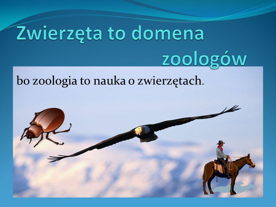 Zwierzęta to domena zoologów