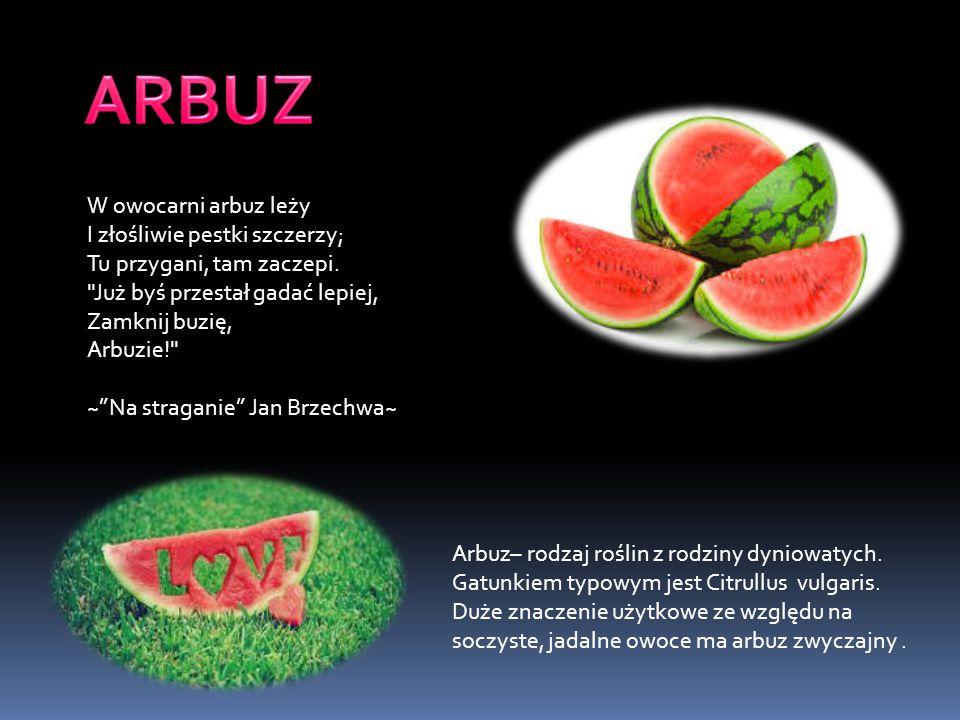 ARBUZ W owocarni arbuz leży I złośliwie pestki szczerzy;