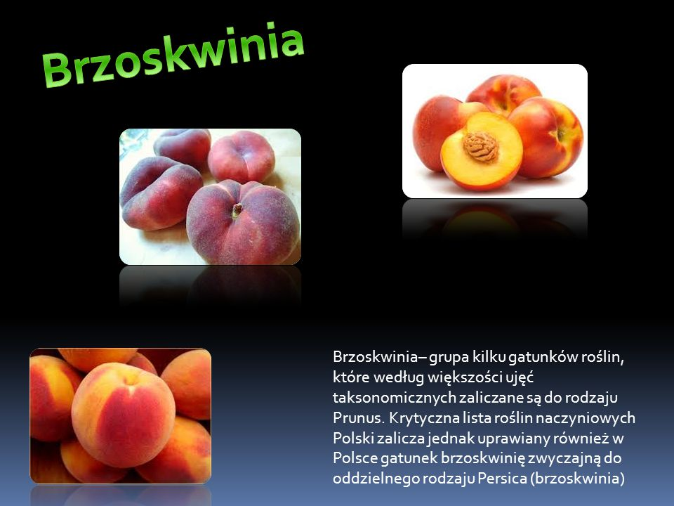 Brzoskwinia