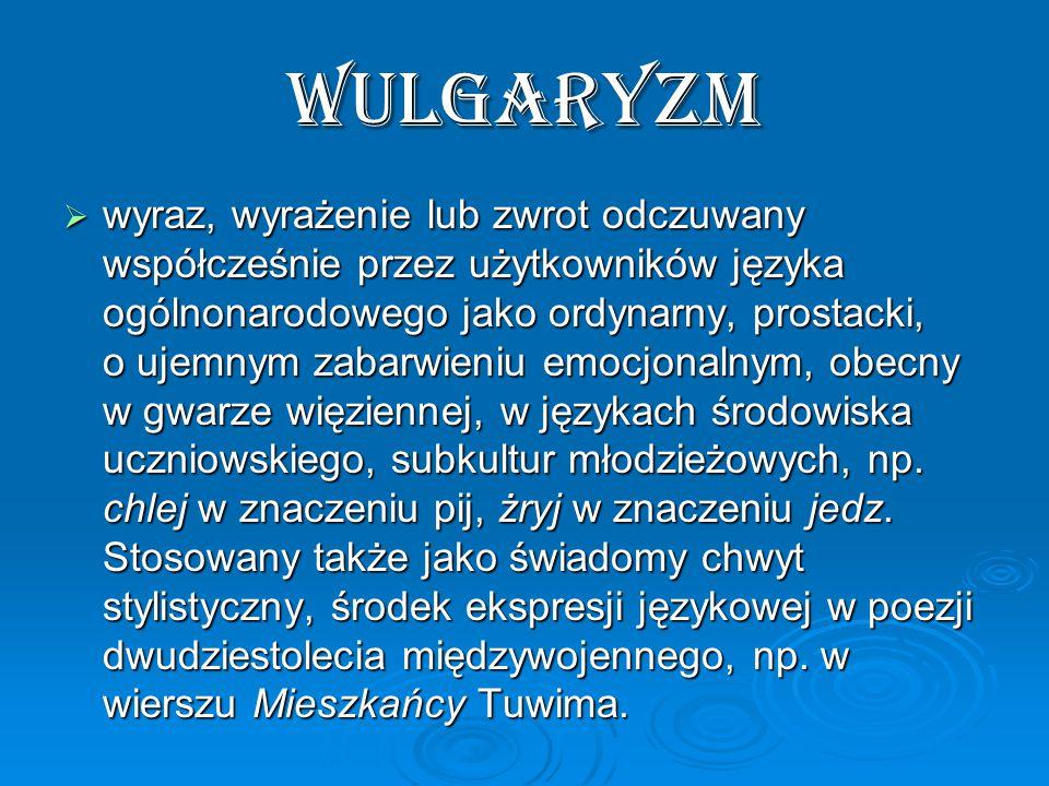 wulgaryzm