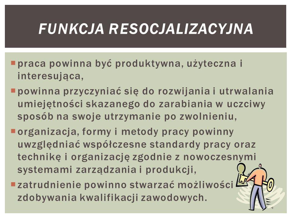 funkcja resocjalizacyjna