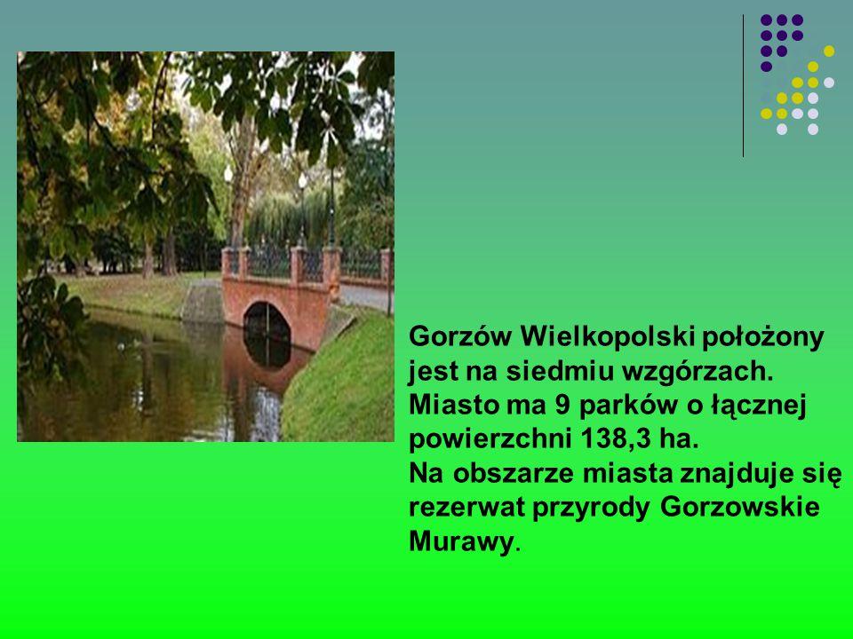 Gorzów Wielkopolski położony jest na siedmiu wzgórzach