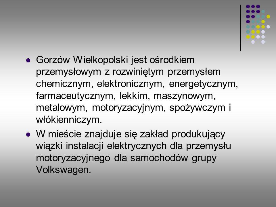 Gorzów Wielkopolski jest ośrodkiem przemysłowym z rozwiniętym przemysłem chemicznym, elektronicznym, energetycznym, farmaceutycznym, lekkim, maszynowym, metalowym, motoryzacyjnym, spożywczym i włókienniczym.
