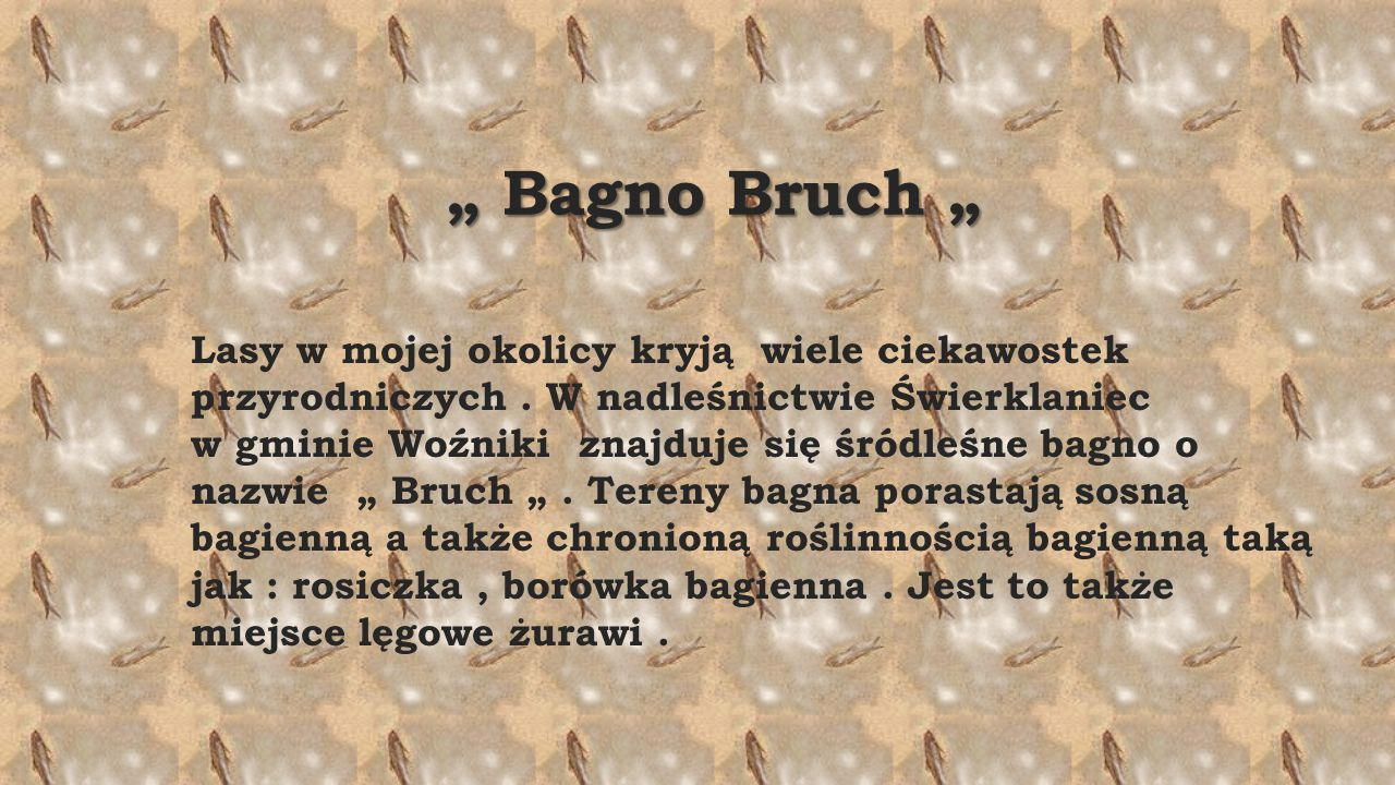 """ Bagno Bruch """