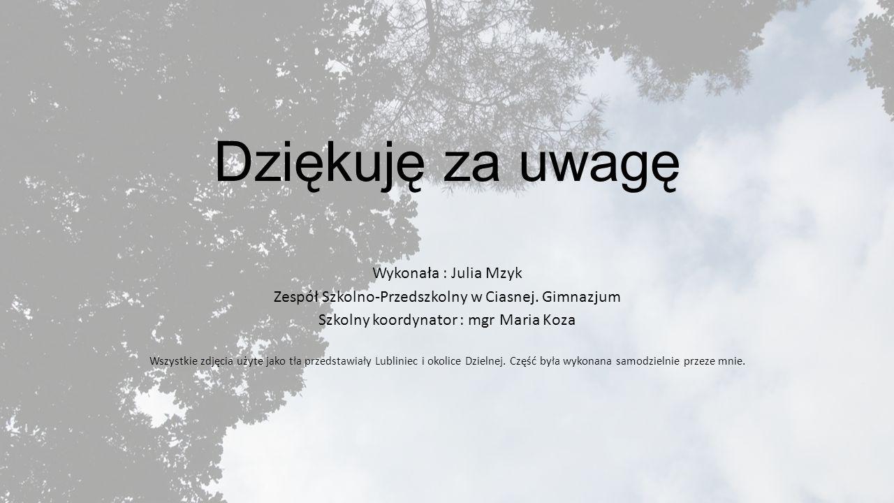 Dziękuję za uwagę Wykonała : Julia Mzyk