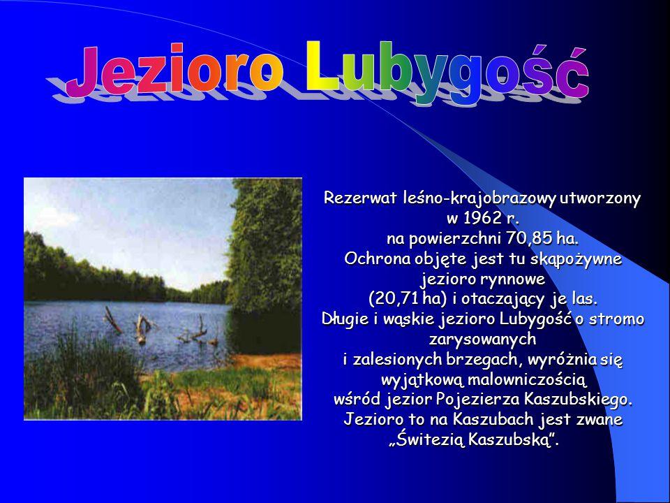 Rezerwat leśno-krajobrazowy utworzony