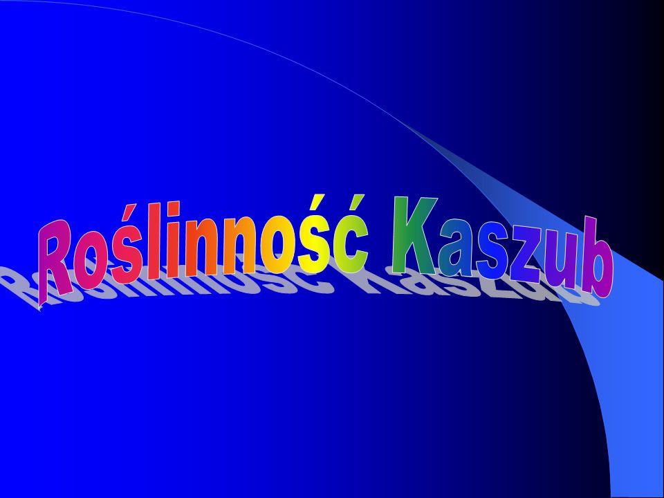 Roślinność Kaszub